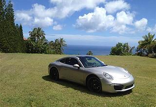 Hawaii Loa Ridge Land