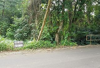 Waihee Land