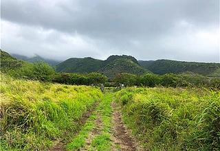 Molokai East Land